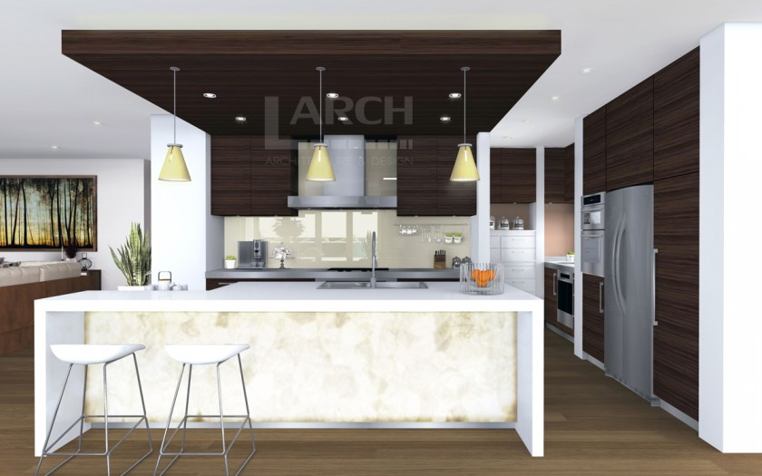 Larch_Interior_kitchen